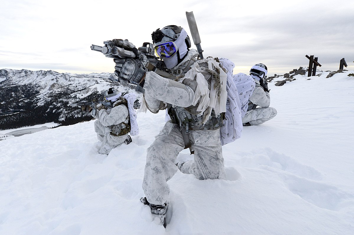Utilizing Cyber in Arctic Warfare